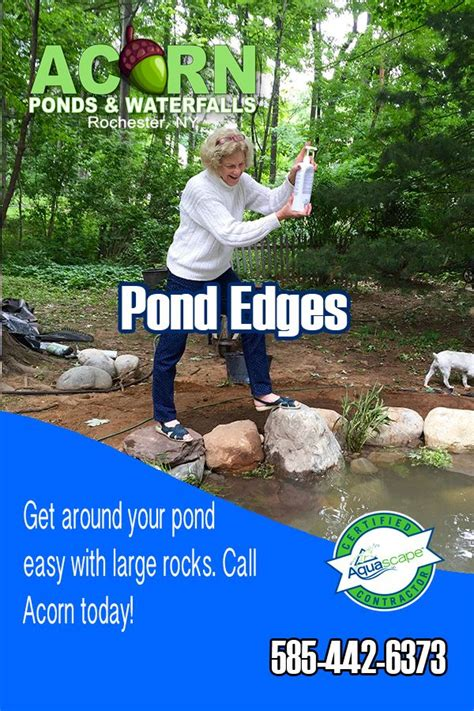Add your bacteria and navigate all around the pond when