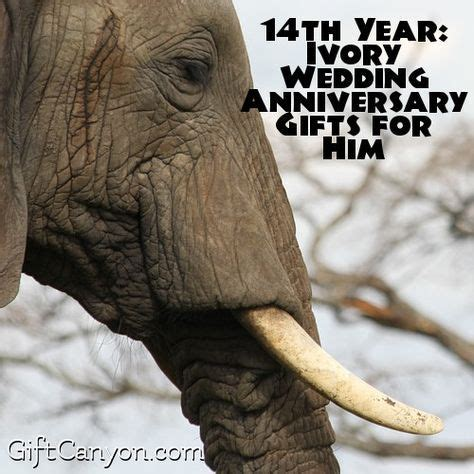 14th Year: Ivory Wedding Anniversary Gifts for Him - Gift