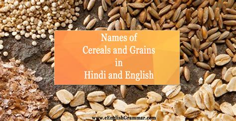 List / Names of cereals and grains in Hindi and English