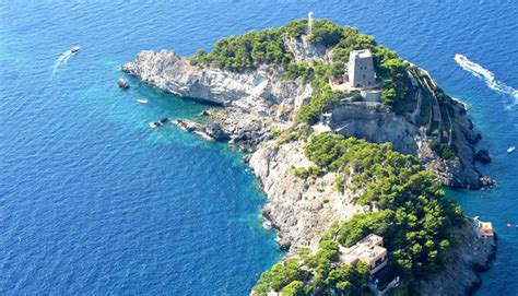 Inside Dolphin Island: Uncovering the Mediterranean's Most