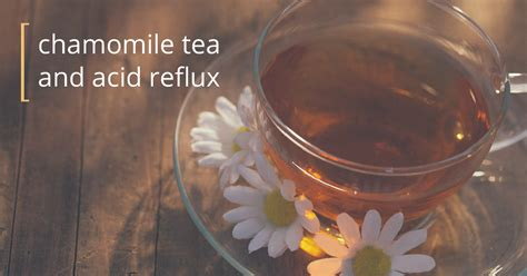 Chamomile Tea for Acid Reflux: What You Should Know