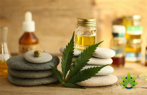 Cannabidiol (CBD) is Best-Selling Herbal Supplement in