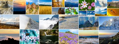 Collage Of Nature Photos Stock Photo - Download Image Now