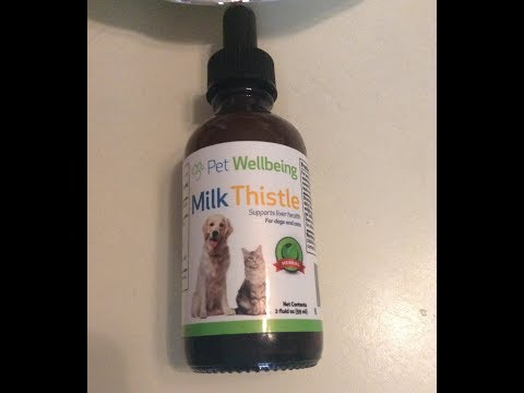 Organic Milk Thistle for Dogs and Cats – Liver Supplement
