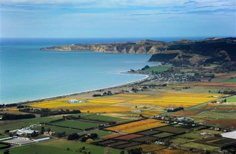 The world lines up for a taste of Hawkes Bay   Otago Daily