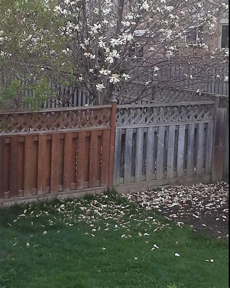 stain - Cleaning and staining a fence with segments of