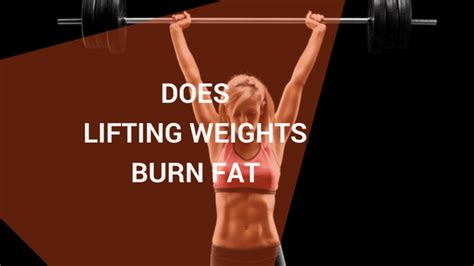 Does Lifting Weights Burn Fat? - Barbell Pursuits