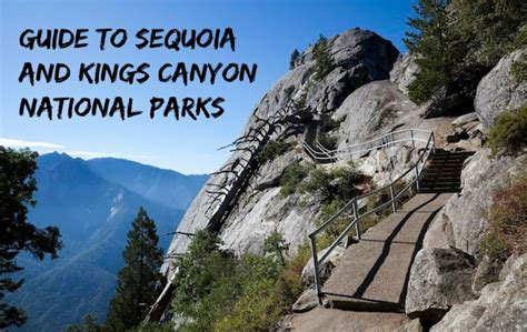 Guide to Sequoia and Kings Canyon National Parks with kids