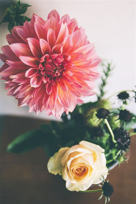 Flower Friday: The Second Life of Fresh Flowers | Pretty
